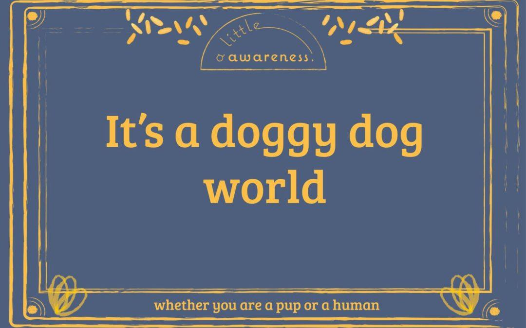 Zen and the Art of Puppy Maintenance