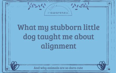 What my stubborn little dog taught me about alignment